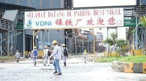 Media Asing Soroti Kelakuan TKA China Santap Buaya di Sulawesi Tenggara